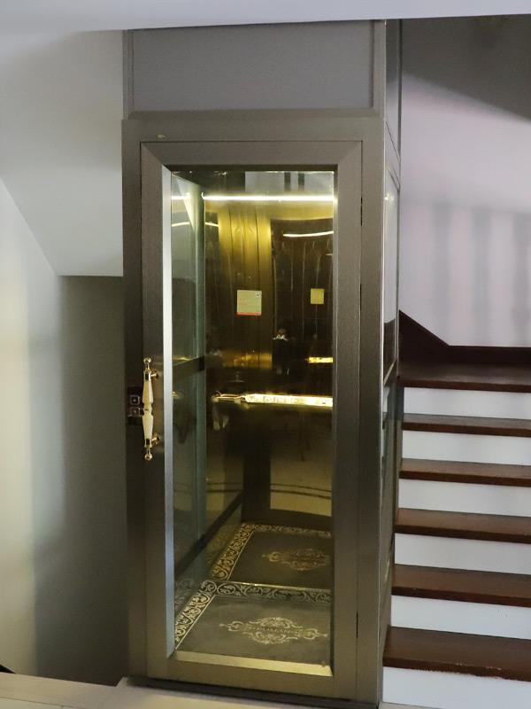 Steel Belt Platform Elevator
